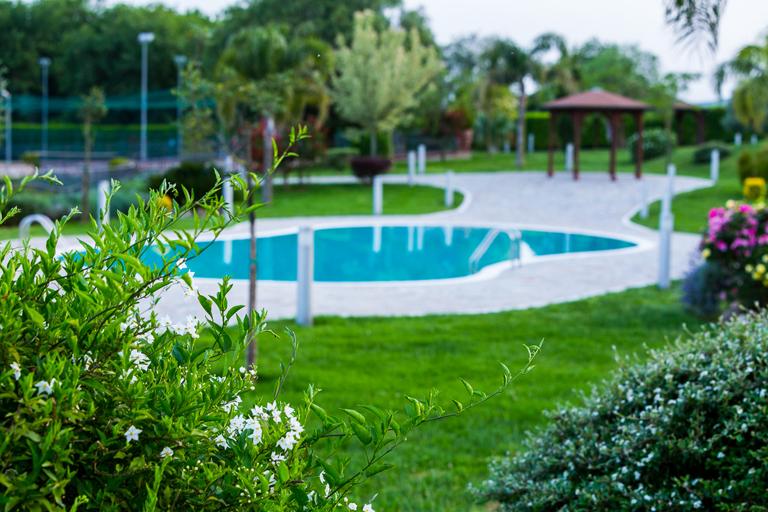 Piante e piscina768x512
